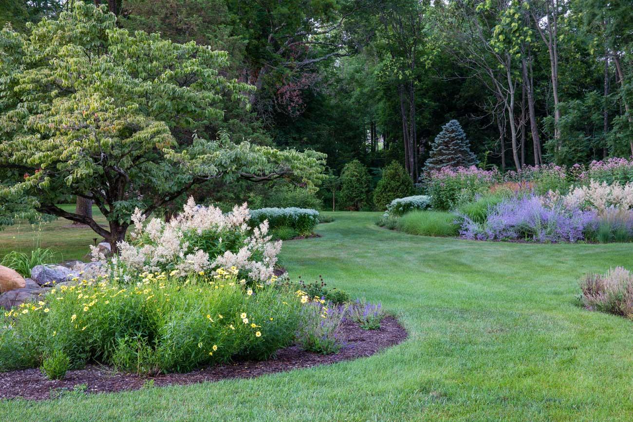 Pollinator Garden landscape architecture